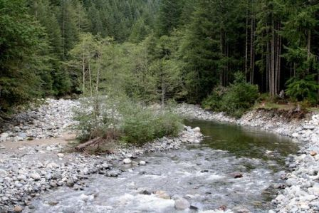 Middle Fork Campground Creekbed